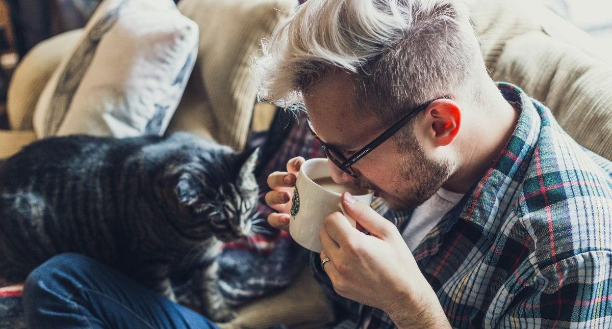 Kot i człowiek
